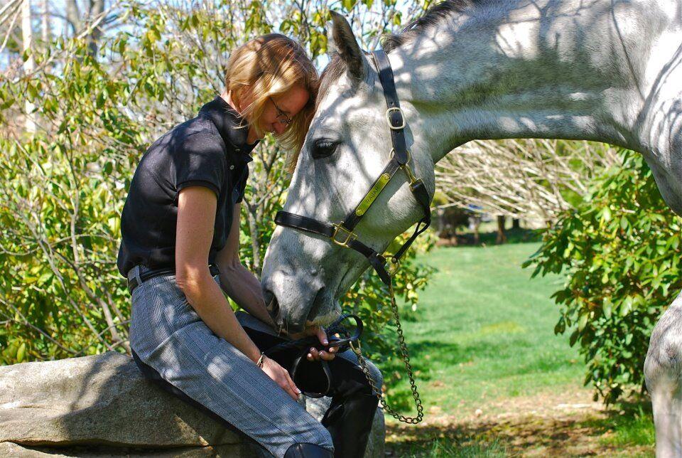 lynne-bryan-phipps-horse-txa-one